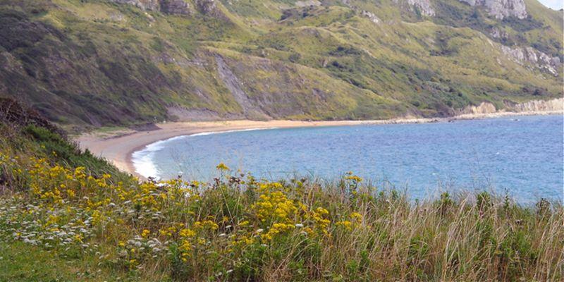 Ringstead Bay Dorset Coast