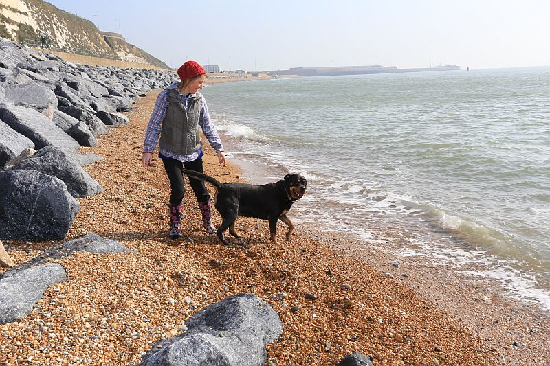 Shakespeare Beach in Dover Re-opens